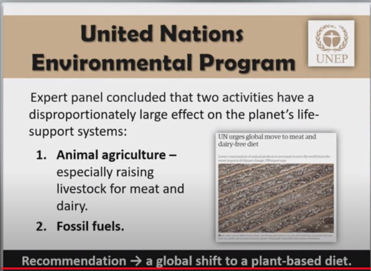 UNEP Shift to Plant-Based